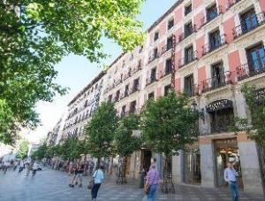 關於阿雷納爾索爾佩蒂特宮飯店 (Petit Palace Arenal Sol)