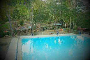 picture 4 of Mount Avangan Eco Adventure Park
