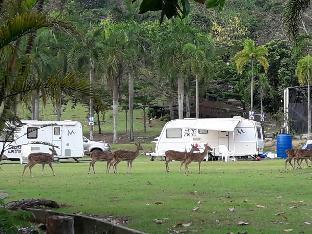 Khaokheow Caravan