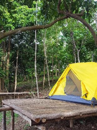 picture 5 of Sinag Community Campsite