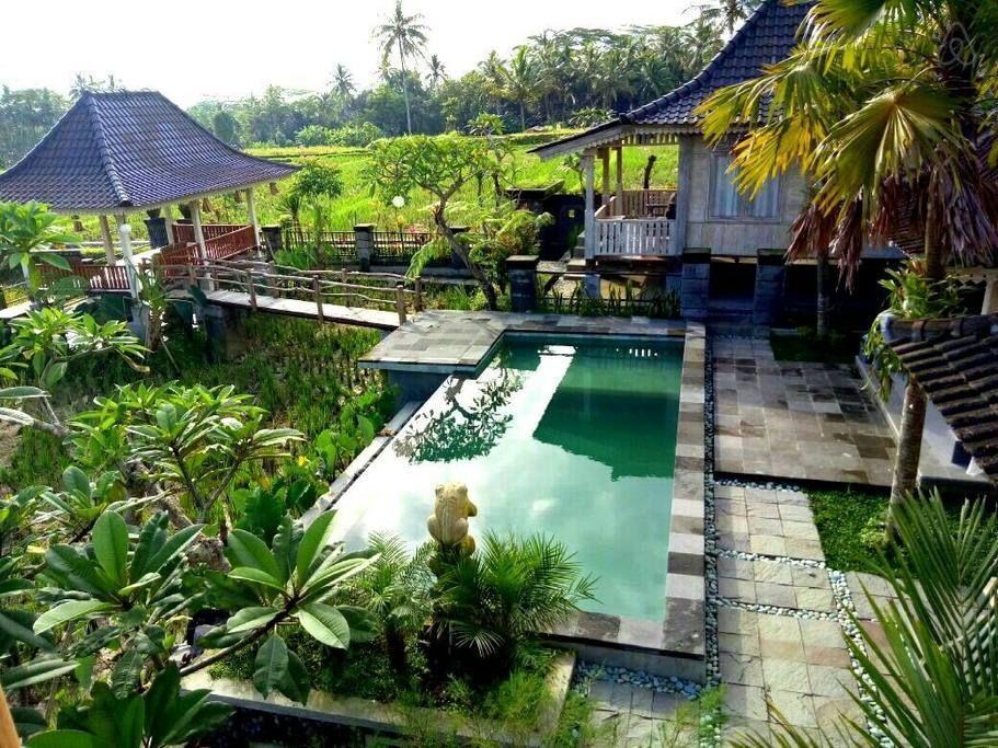 Reviews Uma Caming Villa with infinity swimming pool
