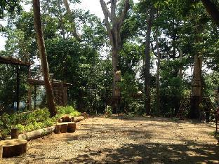 picture 3 of Jungle Environment Survival Training Jest Camp Dormitory