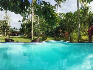 picture 4 of Hacienda Solange