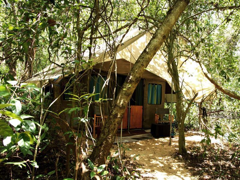 Mahoora Tented Safari Camp   Dambana