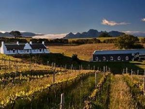 Aaldering Vineyards and Wines Luxury Lodges
