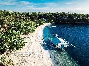picture 1 of Malapascua Thresher Cove Dive Resort