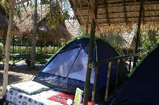 %name Tent Stay in Chiang Rai เชียงราย