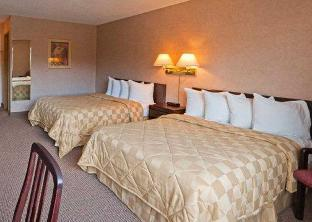 Фото отеля Econo Lodge Inn and Suites Victoria