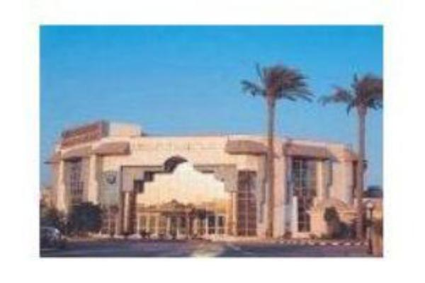 Cataract Pyramids Resort Giza