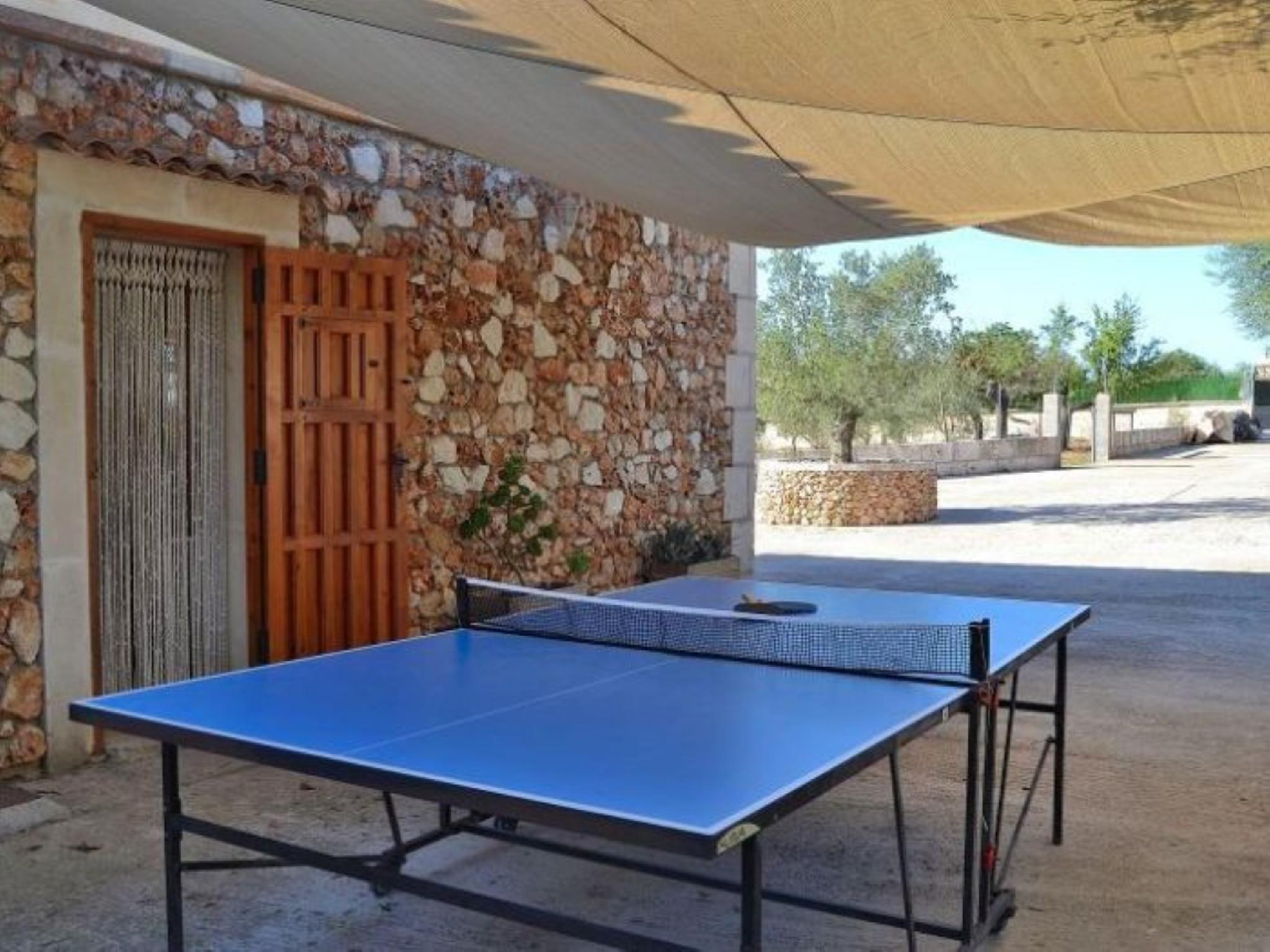 102108 -  Villa in Santa Margalida