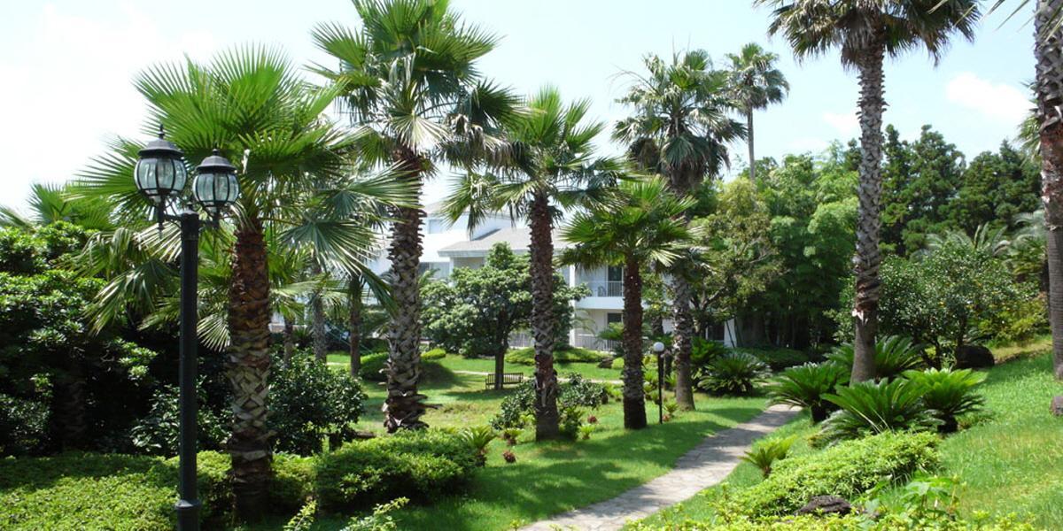 Springhill Resort