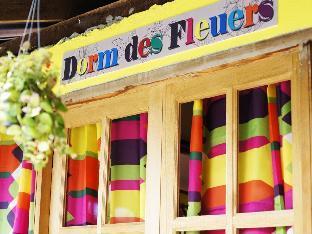 ドーム デ フルール ホステル Dorm Des Fleurs Hostel