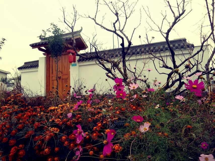 Scenery Retreats Taibai Mountain Hot Spring Villa Resort