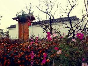 Scenery Retreats Taibai Mountain Hot Spring Villa Resort