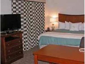 Homewood Suites by Hilton Albany Hotel