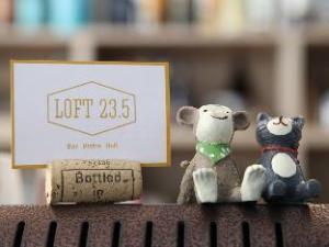 Loft 23.5 Hostel