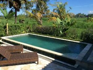Ubud Rice Rield Villa