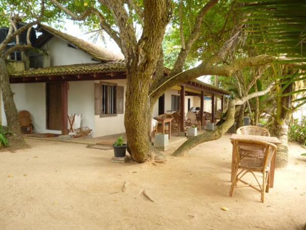 The Shack Resort Mirissa