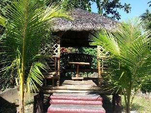 picture 5 of Villa Elmz Resort