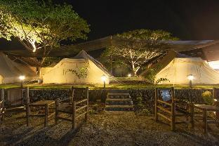 picture 1 of The Acacia Glamping Park