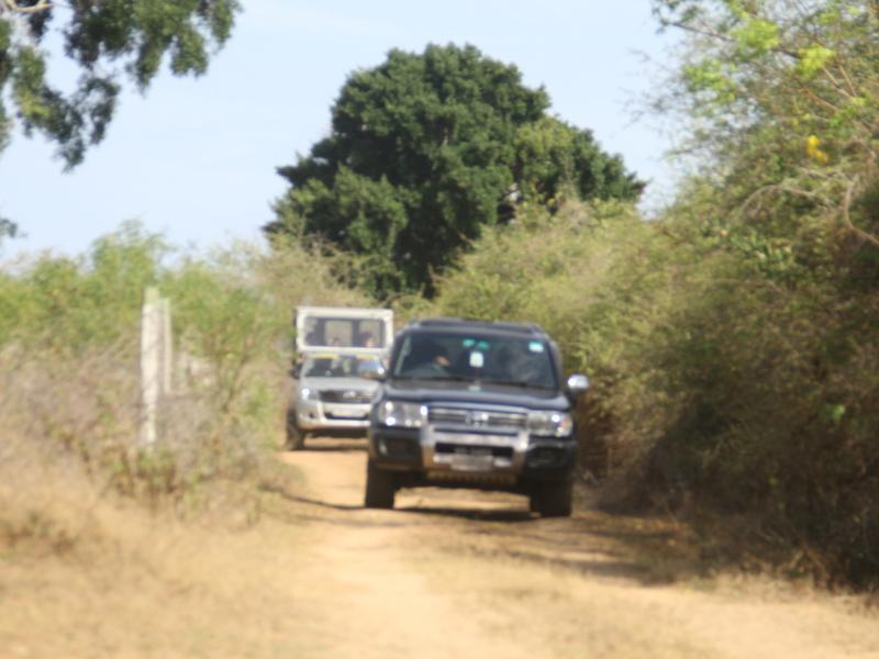 Dickshon Safari Camping