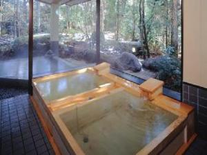Nikko Hotel Seikoen