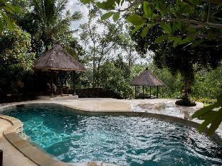 Ubud Riverview Villa