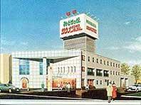 Midorigaoka Onsen Sauna Hotel