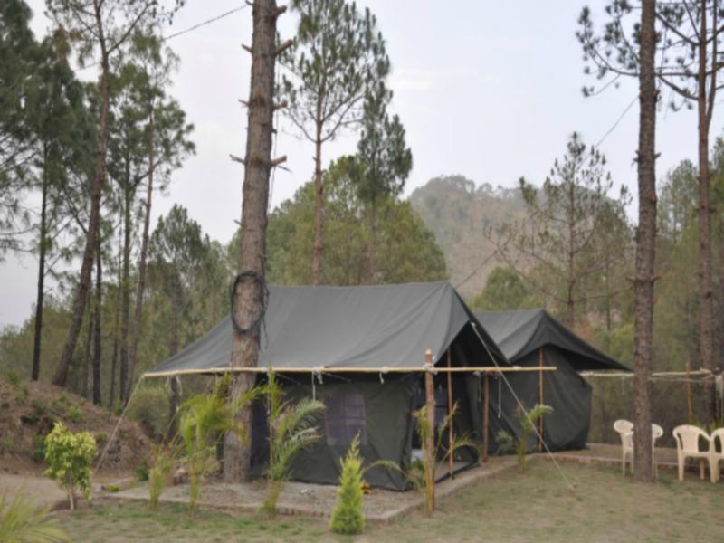 Nestling Meadows Camping Site