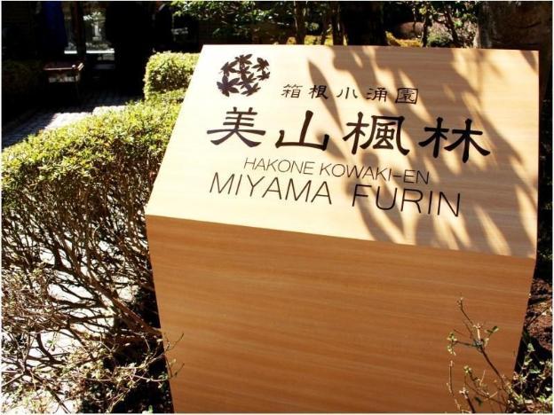 Hakone Kowakien Miyama Furin