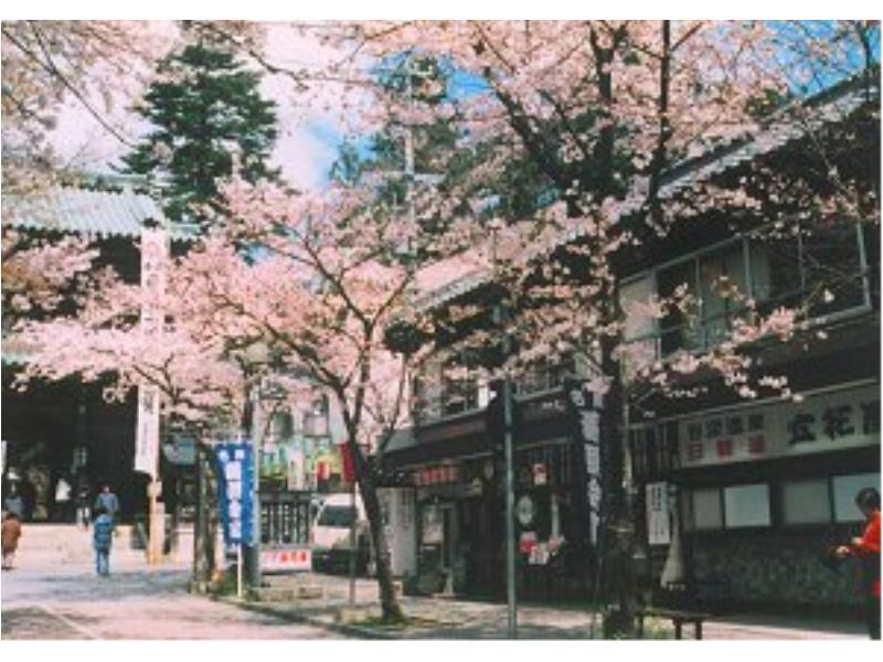 Tachibanaya Ryokan