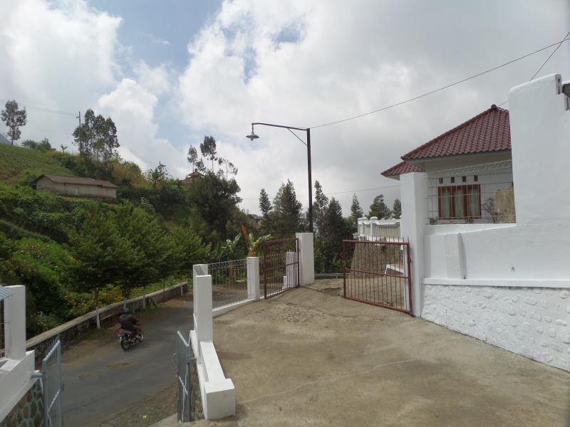Savana Guesthouse