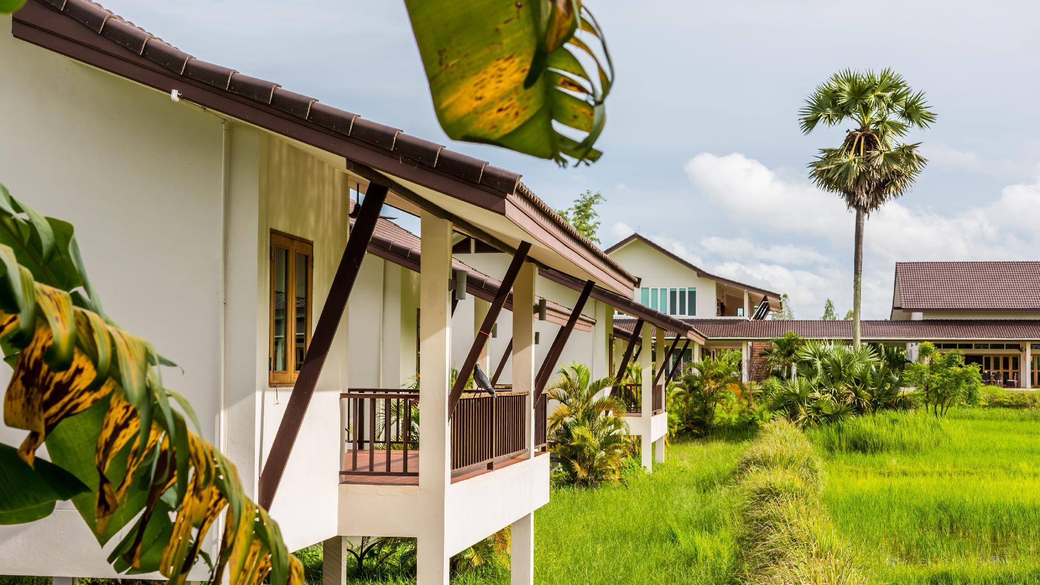Pimali Foundation   Hospitality Training Center