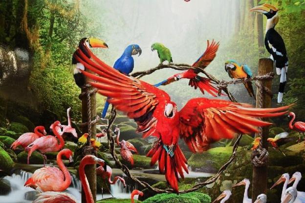 Jurong Bird Park - TICKETS ONLY