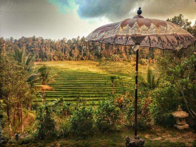 Bali Lush Guest House