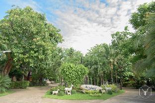 マイヤイ リゾート ビッグ ツリー Maiyai Resort - Big Tree