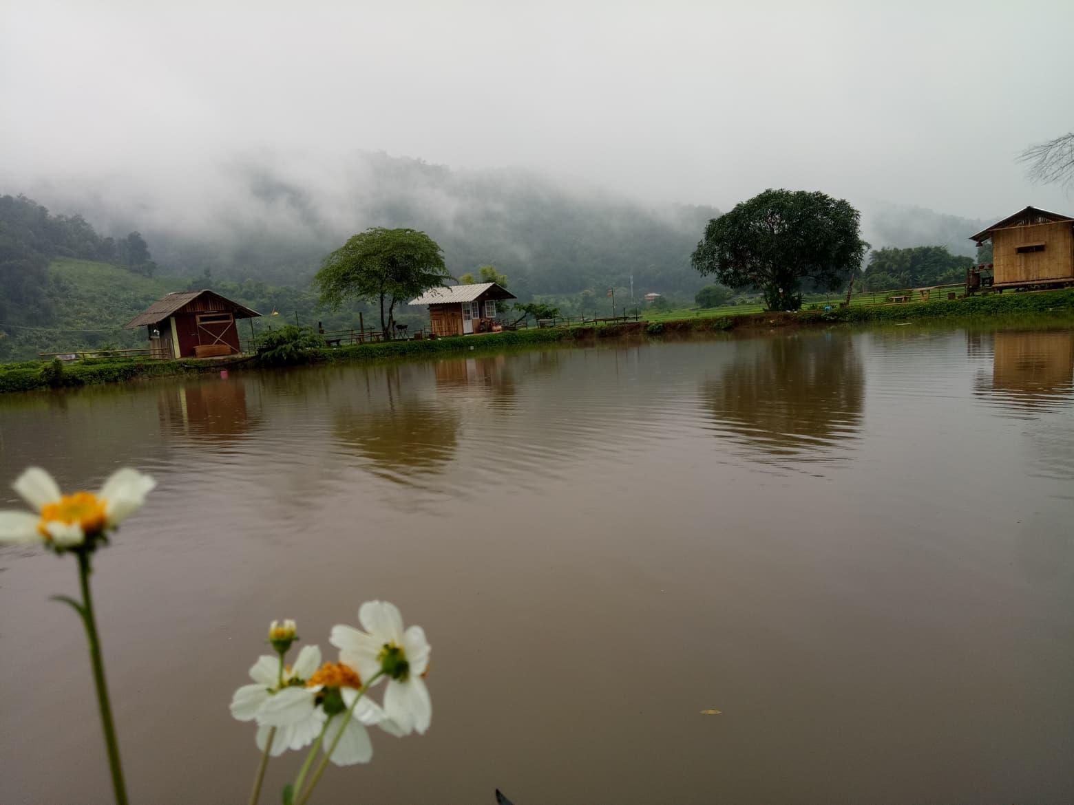 Samong Fishing Park @ Home Stay