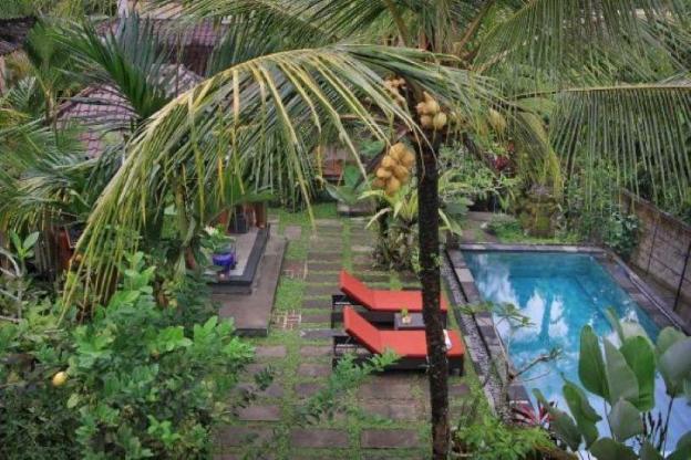 one bedroom villa  with kitchen sharing pool #bima