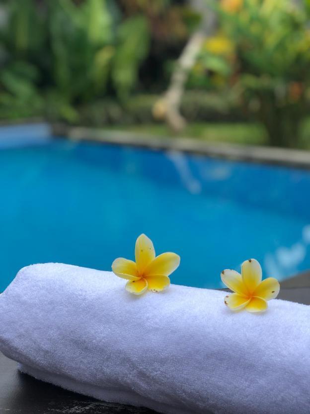 Cozy and quiet villa with pool