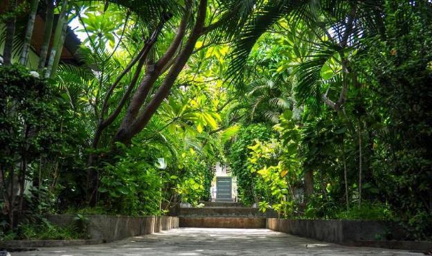 Scuba Tribe Bali Dormitory Kingsize Bed