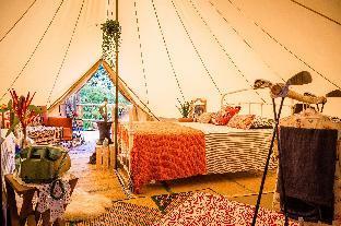 %name Retro Mountain Koh Phangan  Luxury tent 2/4 pax เกาะพะงัน