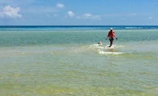 %name Luxury 3 Bedroom Beach House Private Pool  เกาะสมุย
