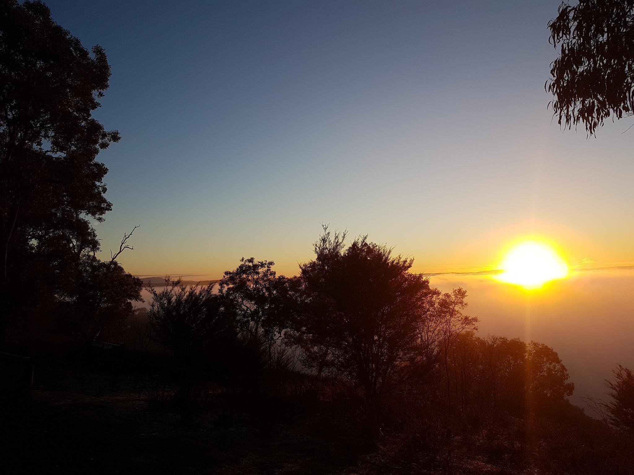 Sunrise Bush Retreat