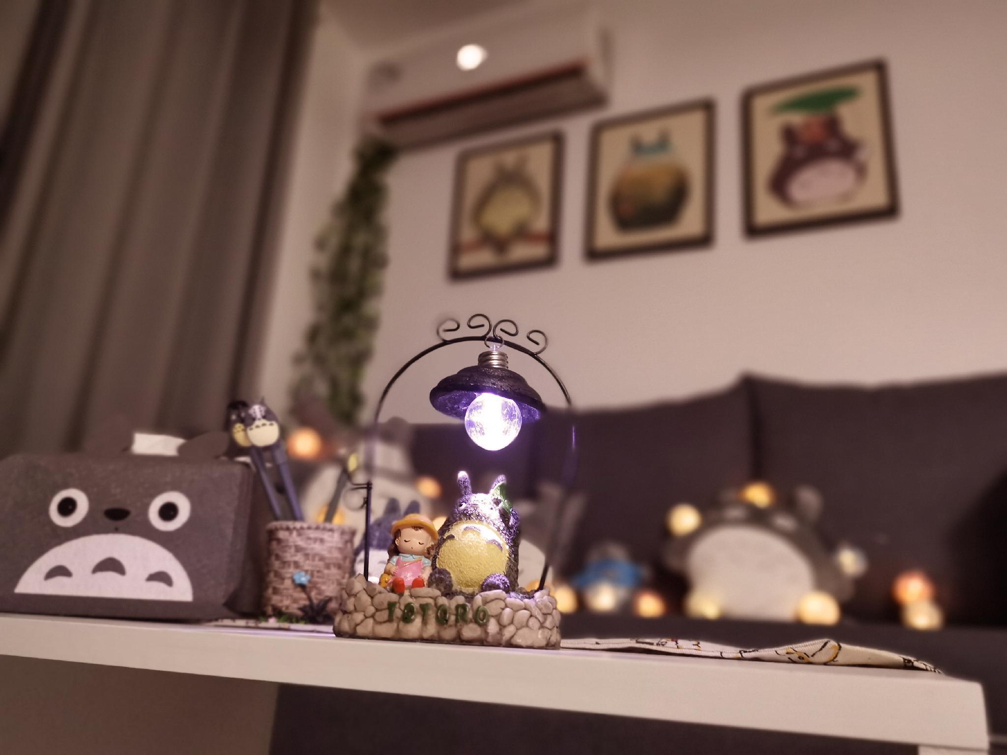 Modern Simple Totoro Cabin