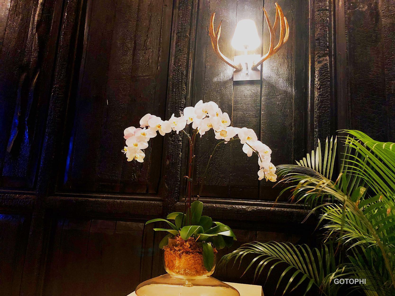 Gotophi Luxurious Hotel Knightsbridge Makati 5821