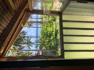 picture 3 of Tarzan's Tree House