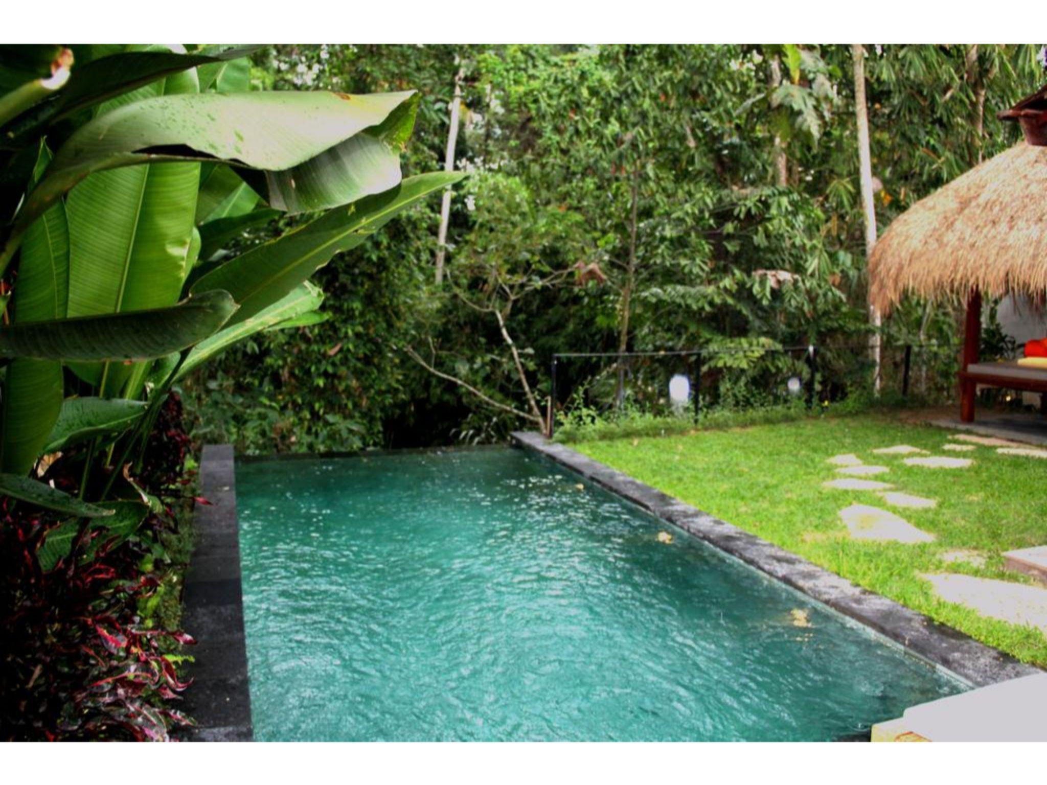 Ubud Padi Villa Privacy Private Pool Valley View